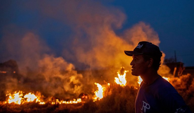 Il 17% della foresta amazzonica è andato in fumo. La colpa è anche di Bolsonaro.